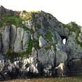 写真: 千騎ヶ岩