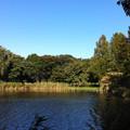 Photos: 公園の池
