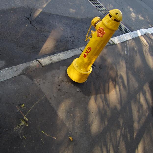 消火栓復活