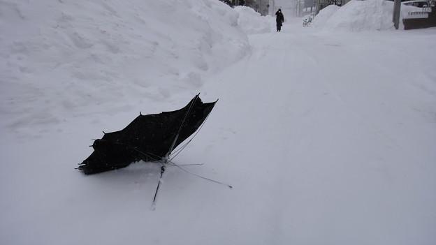 札幌に猛吹雪吹き荒れる