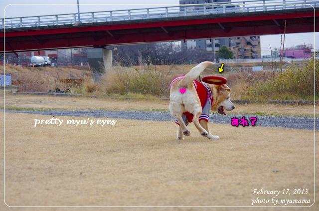 写真: s-578