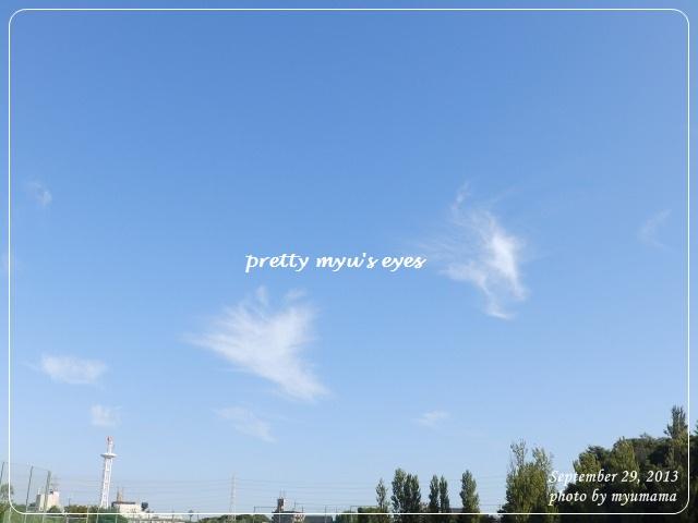 写真: s-083