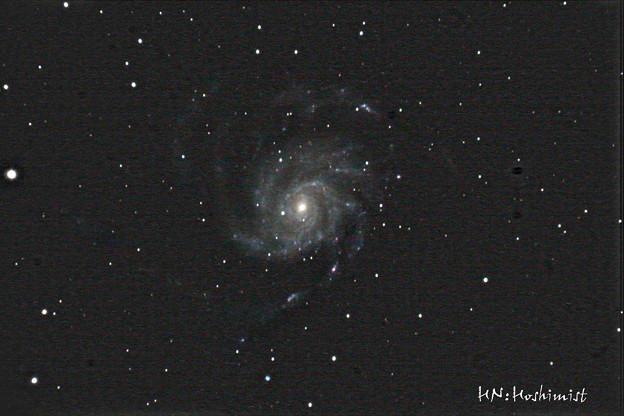 M101 回転花火銀河(IMG_1646) 2014.01/26