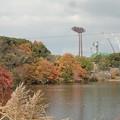 Photos: 12月14日「砥部の西大池」