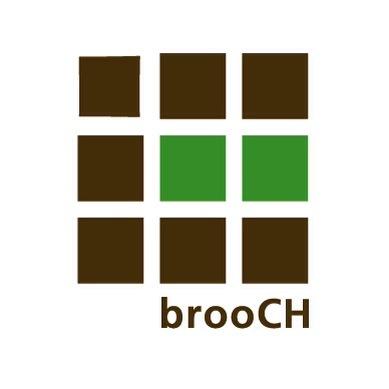 brooCH hair