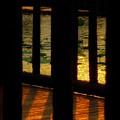 写真: Un'ombra e la superficie di acqua