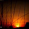 Sky of a dusk color