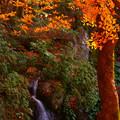 Photos: これも「滝」♪