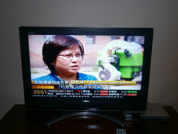 Photos: テレビ