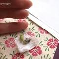 Photos: こんなに小さい。(ヤマトシジミ飼育 蛹)
