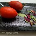 Photos: カラスウリと各種紅葉。