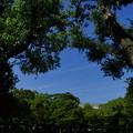 大和田公園にて04