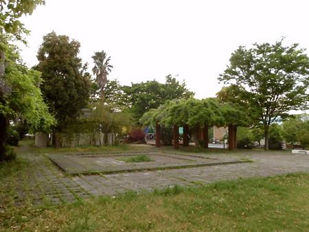 P4262958 藍住町緑の広場~【徳島県板野郡】(無料) - 東奔西走