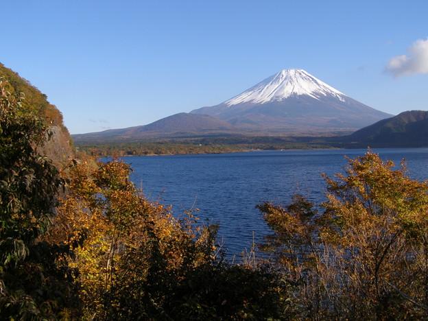 写真: これが一番本栖富士