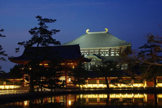 夜の大仏殿