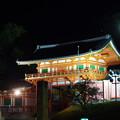 誰もいない八坂神社