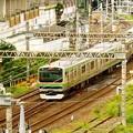 Photos: ー湘南新宿ラインー