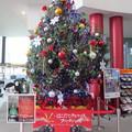 函館駅クリスマスツリー7