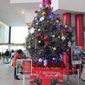 函館駅クリスマスツリー12
