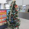 函館駅クリスマスツリー16