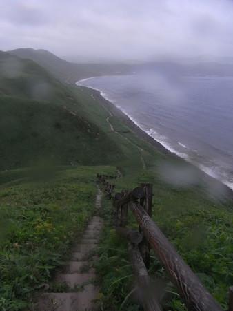 1005-礼文島5