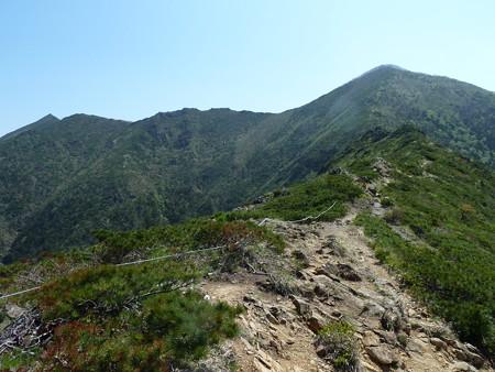 1101-アポイ岳2