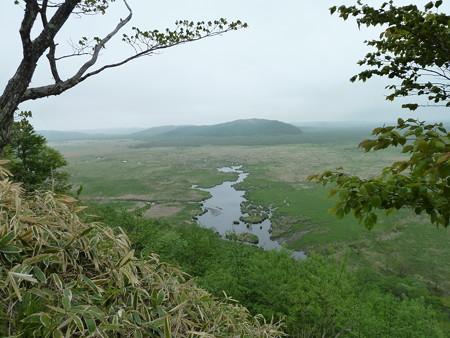 1101-釧路湿原(コッタロ4)