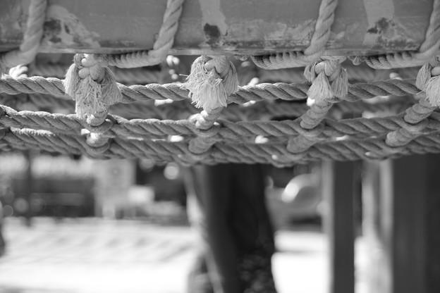 公園の守り神 -ロープ-