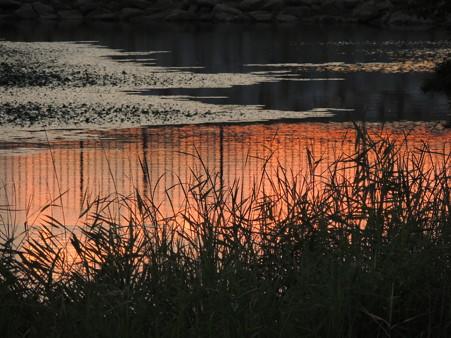 八ッ谷池夕陽の映り込み