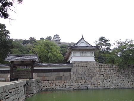 大手門からの丸亀城