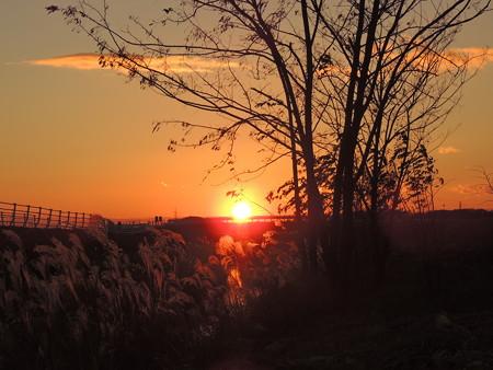 201206夕陽