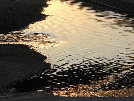 夕陽に染まる川面