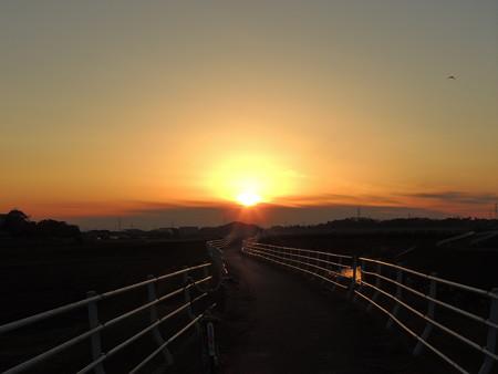 逢妻女川サイクリングロードの夕陽