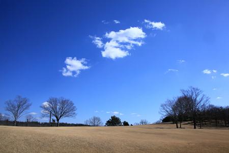 小春日和の芝生の丘