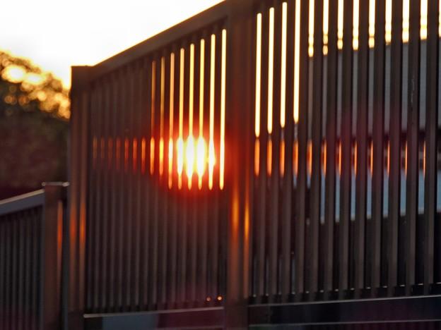 フェンス越しの夕陽