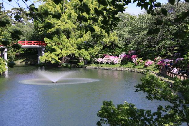 岡崎城の春