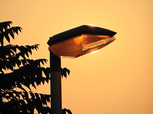 朝日の外灯