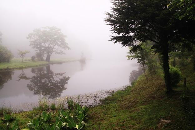 濃霧に咽ぶ段戸湖