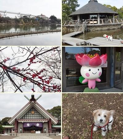 千葉公園での一日
