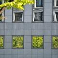 Photos: Windows