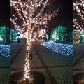 Photos: 京セライルミネーション(3D)I
