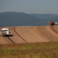写真: 丘を耕す