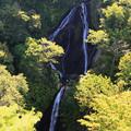 写真: 七ツ滝・山形