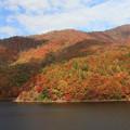 彩る小野川湖