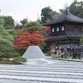 秋の銀閣寺
