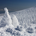Photos: 樹氷原の美しさ