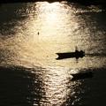 写真: 松島湾の輝き