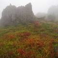 写真: 霧に霞む岩々