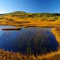 月山の壮美な池塘