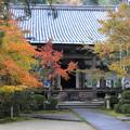 彩る西明寺・京都